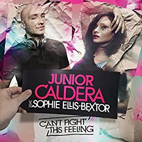 Can't Fight This Feeling [feat. Sophie Ellis-Bextor]