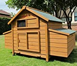 Chicken Coops Imperial Savoy Large Chicken Coop Suitable For Up to 10 Birds Depending On Size