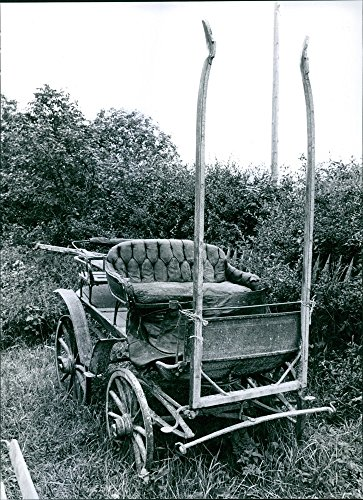 vintage-photo-of-year-a-photo-of-a-chariot-in-the-garden