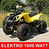 Kinder Elektro Quad S-8 Farmer 1000 Watt Miniquad gelb