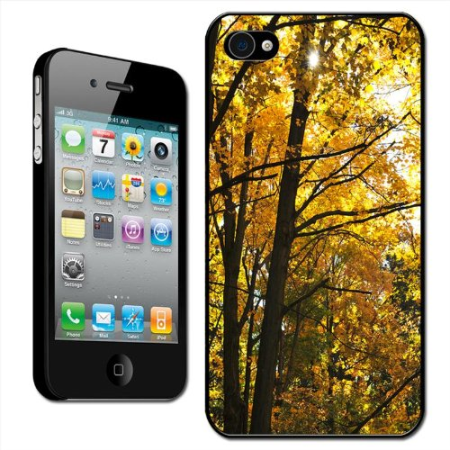 fancy-a-snuggle-autumn-trees-in-shades-of-yellow-and-orange-ready-for-winter-clip-on-back-cover-hard