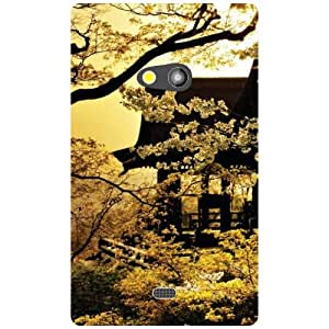 Nokia Lumia 625 Back Cover - Brown Colored Designer Cases