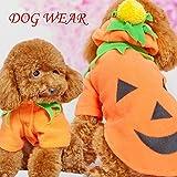 【 サイズ 選択可 】 犬 猫 ハロウィン かぼちゃ コスプレ コスチューム 服 衣装 変装 ペット パンプキン (L)
