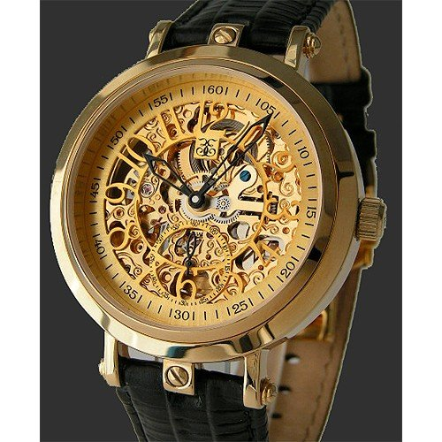 "Eric Edelhausen ""Aurora"", Men's Gold Plated Automatic Classic Skeleton Watch"