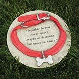 http://ecx.images-amazon.com/images/I/610mgJujA8L._SL160_.jpg