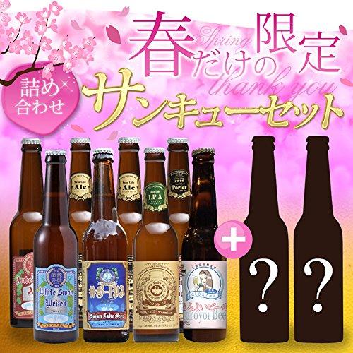 【世界が認めた新潟の地ビール】 スワンレイク クラフトビール 【春の福袋】 世界一のビールを含むスワンレイクビールを飲み比べ10本セット 詰め合せ パーティーセット