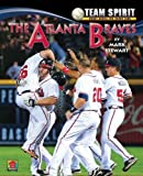 img - for The St. Louis Cardinals (Team Spirit (Norwood)) by Professor of Civil Engineering and Director of the Centre for Infrastructure Performance and Reliability Mark Stewart (2012-01-15) book / textbook / text book