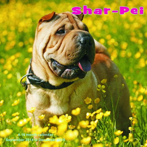 Shar-Pei Calendar - 2015 Wall calendars - Dog Calendars - Monthly Wall Calendar by Magnum