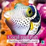 Dazzling underwater world: Coral reef...