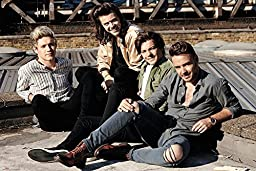 One Direction- Rooftop Coolness Poster 36 x 24in