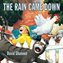 The Rain Came Down Audiobook by David Shannon Narrated by Bruce Bailey Johnson