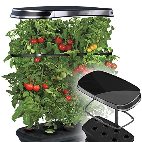 Miracle-Gro AeroGarden Extra LED Indoor Garden with Gourmet Herb Seed Kit and Bonus Cherry Tomato Seed Pod Kit (Aerogarden Seed Kit Tomato compare prices)