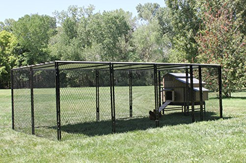 4' X 5' Large Snap N' Lock Chicken Coop & 8' X 16' Chicken Run (Snap Lock Chicken Coop compare prices)