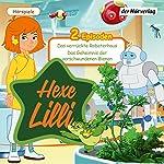 Das verrückte Roboterhaus / Das Geheimnis der verschwundenen Bienen (Hexe Lilli)    div.