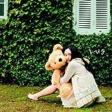 新垣結衣 CD&DVD 「hug(初回限定盤B)」