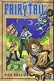 Fairy Tail (4) : Fairy Tail