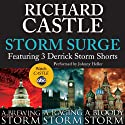 Storm Surge: Featuring 3 Derrick Storm Shorts: Brewing Storm, Raging Storm, and Bloody Storm (       UNABRIDGED) by Richard Castle Narrated by Johnny Heller