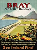 TRAVEL BRAY IRELAND PROMENADE SEA MOUNTAIN HOLIDAY ART PRINT POSTER 30X40 CM 12X16 IN BB7460B