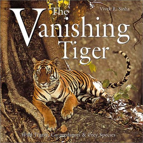 vanishing tigers in india Tigers disappearing from indian soil 01 apr 2012 the tiger population is vanishing at a rapid it can be considered partially successful because it has saved the tigers from extinction due to which india stands among the few nations which can boast of being a home to the royal animal.