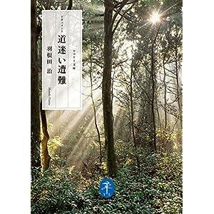 ヤマケイ文庫 ドキュメント 道迷い遭難 [Kindle版]