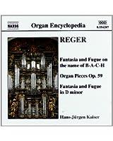 Reger/oeuvres pour orgue vol.3
