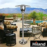 AZ Patio Heaters Natural Gas Patio Heater in Stainless Silver