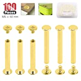 Hilitchi 50-Sets M5 Brass Plated Phillips Chicago Screw Posts Binding Screws Assortment Kit for Scrapbook Photo Albums Binding, Leather Repair - Gold (M5 x 40mm-50Sets) (Color: M5 x 40mm-50Sets)