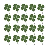 Healifty 48pcs Natural Real Pressed Dried Flowers Four-Leaf Clover Leaf Plant for Christmas DIY Ornaments Resin Jewelry Art Craft (Color: Green, Tamaño: M)