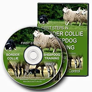 First Steps In Border Collie Sheepdog Training [DVD]