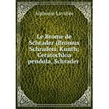 Le Brome De Schrader (Bromus Schraderi, Kunth; Ceratochloa Pendula, Schrader): Mémoire Lu Ã? La Société ImpÃ...