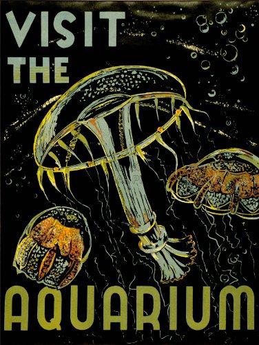 Advert Exhibition Visit Aquarium Marine Creatures Jellyfish Bubbles 30X40 Cms Art Poster Print Picture Cc6096