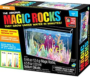 The Original Magic Rocks - Octopus