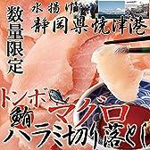 静岡県焼津港で水揚げされた本場のマグロ!!【訳あり】トンボマグロハラミ切り落とし500g