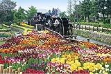 2016ピース ジグソーパズル パズルの超達人 五連水車と花咲く公園-富山 ベリースモールピース (50x75cm)