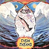 Fish Rising by Steve Hillage (2007)