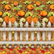 Beistle 1-Pack Decorative Pumpkin Patch Backdrop, 4-Feet by 30-Feet