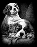 Reeves Spaniels Scraperfoil Artwork, Silver