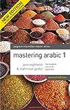 Mastering Arabic 1 (Palgrave Master Series (Languages))