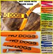 &quot;NO DOGS&quot; Orange Colour Coded Non-Pull Nylon Dog Harness & Padded Lead Set (NOT GOOD WITH OTHER DOGS) PREVENTS Dog Accidents By Warning Others Of Your Dog In Advance! Strong As Leather & Chain by Dexil