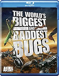 The World's Biggest and Baddest Bugs [Blu-ray] [Import]
