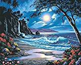 CosyDeal Interesting DIY Oil Digital ペイントing ペイントworks ペイント-By-Number キットs- Fascinating Moonlit Paradise 16*20 インチ アートs クラフトs for キッド Children Family