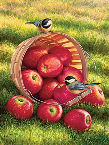 SunsOut 1/4 Peck and a Pair Jigsaw Puzzle (300-Piece)