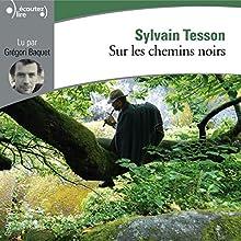 Sur les chemins noirs | Livre audio Auteur(s) : Sylvain Tesson Narrateur(s) : Grégori Baquet
