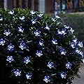 Deckey Purple the Shape of Peach Blossom 6.8m/22.4FT 50 Superbright LED High Quality Solar String Lights