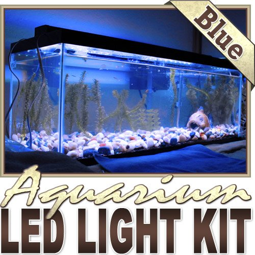 3.3' Ft Blue Aquarium Reef 455Nm Blue Remote Controlled Led Strip Lighting Smd3528 Wall Plug - Main Lighting, Sub Lighting, Fresh Water Tanks, Salt Water Tanks Led Reading Light Strip Night Light Lamp Bulb Accent Lights Smd3528 Water Resistant 3528 Smd Fl