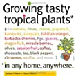 Growing Tasty Tropical Plants in Any Home, Anywhere: 60 Tasty Tropical House Plants You Can Grow No Matter Where You Live