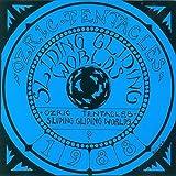 Sliding Gliding Worlds [Vinyl]