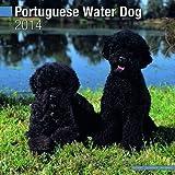 Portuguese Water Dog 2014 Wall Calendar