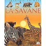 Imagerie animale : Les animaux de la savane