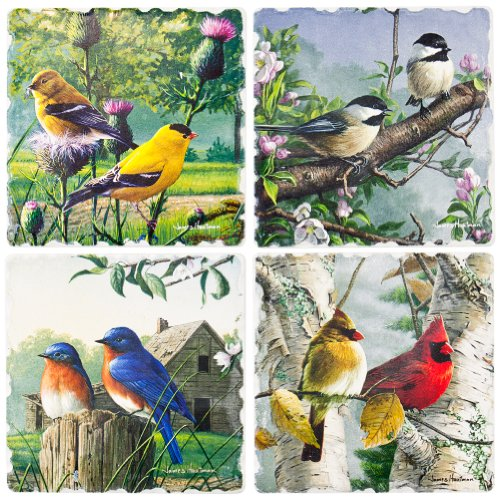 Highland Graphics - Variety Array Of Birds Feathered Friends 4 Pack Coaster Set